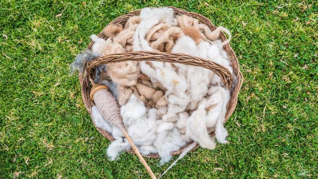 Zalety i właściwości wełny z alpaki